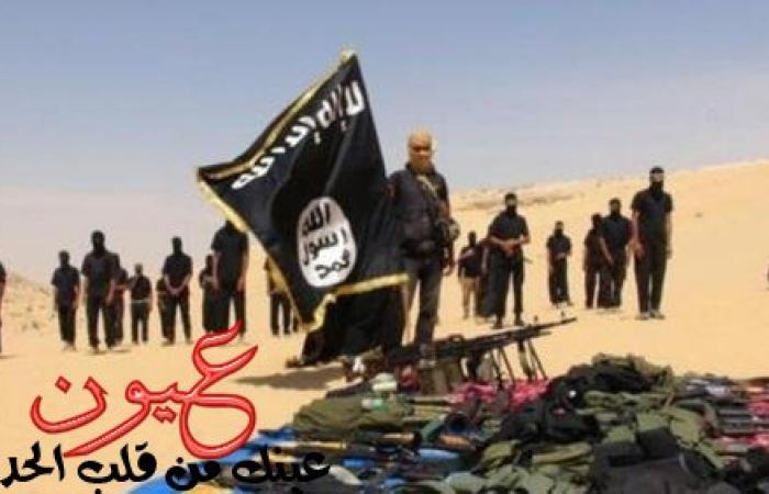 باحثة: «صاعقات القلوب» يثبت فبركة داعش للفيديوهات