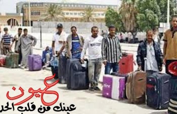 ثلاث فئات مصرية محرومة من العمل في دول الخليج .. تعرف على تلك الفئات
