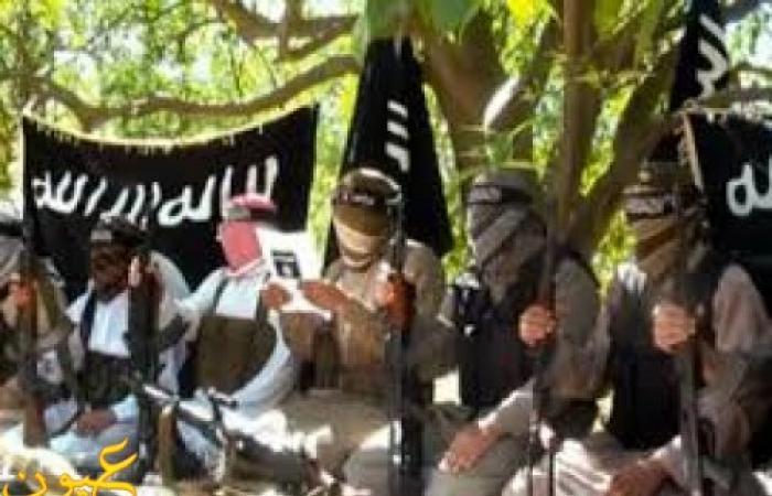 مصادر: قوات الأمن تستعد لتوجيه ضربة الى أنصار بيت المقدس بعد تحديد أماكنها