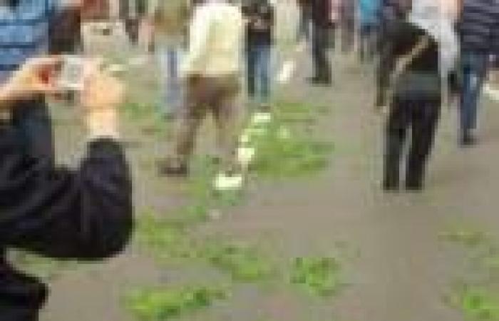 """متظاهرو الإسكندرية يحملون """"البرسيم"""" ويهتفون: """"مشروع النهضة طلع فانكوش"""""""