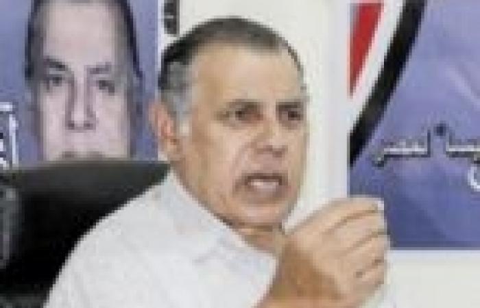 """أبو العز الحريري يقدم مشروعا لمواجهة """"سد النهضة"""""""