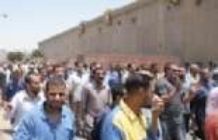عمال 4 شركات بترول يضربون غدا عن العمل للمطالبة بتثبيت المؤقتين وتطبيق لائحة موحدة