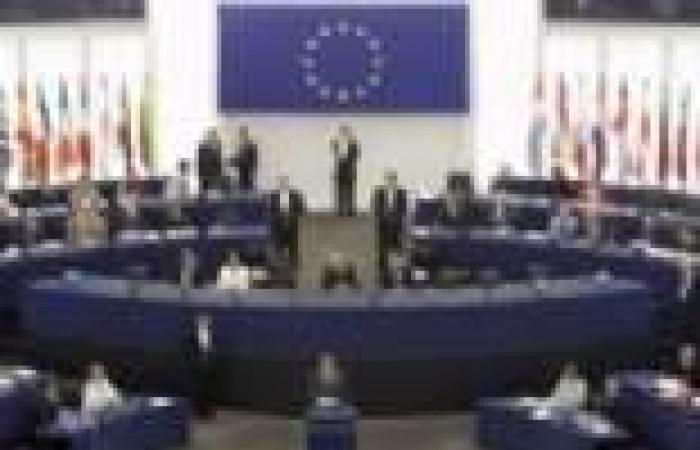 ممثل الاتحاد الأوروبي لحقوق الإنسان يختتم زيارته لمصر