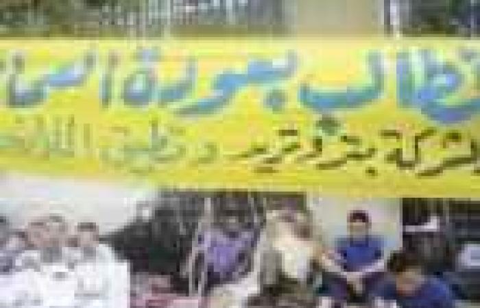 عمال «بتروتريد» : «الشعب يريد إسقاط النظام».. ويؤكدون: سنعتصم حتى 30 يونيو