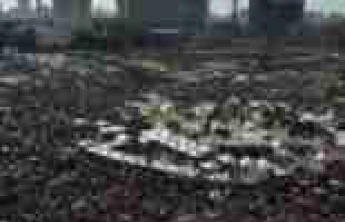 """""""قوة ضد التحرش"""": 46 حالة في """"التحرير"""""""