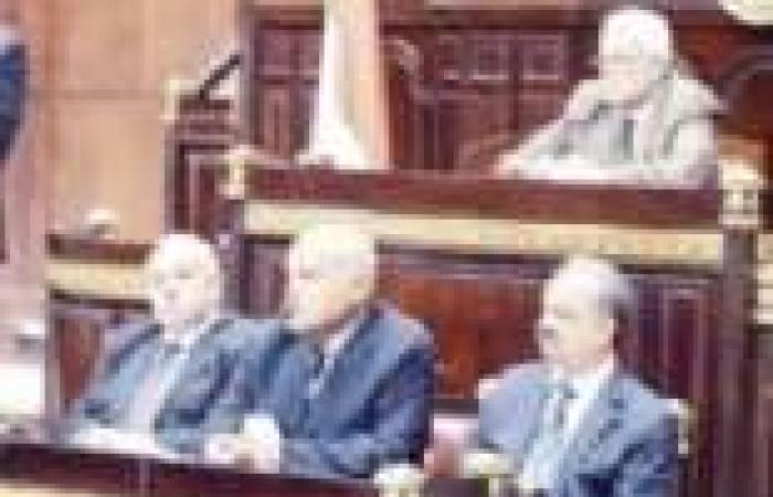 """""""حراس الثورة"""" بالمنيا يطالب بنسف """"الدستور الإخواني"""""""