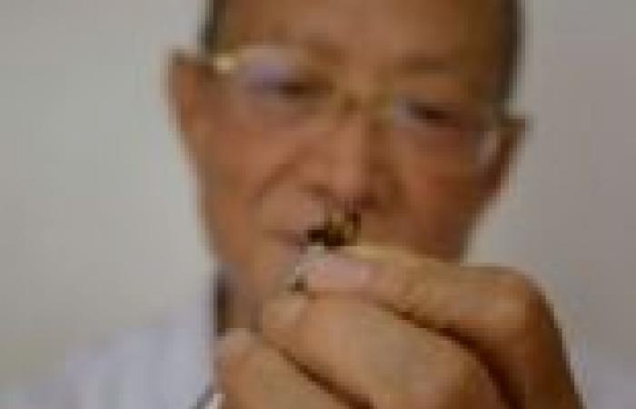 بالصور| علاج السرطان و الروماتيزم بلدغ النحل في الصين