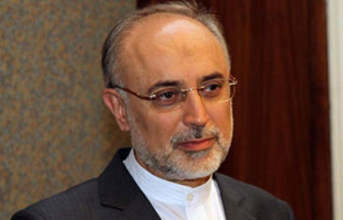 صالحى والإبراهيمى يشددان على ضرورة التوصل لحل سياسى للأزمة فى سوريا