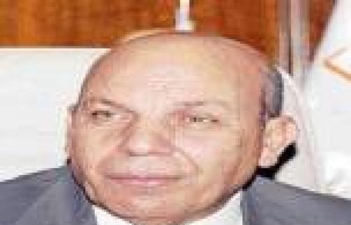 وزير التنمية المحلية: اعتماد «الأحوزة العمرانية» بالمحافظات دون مجالس محلية