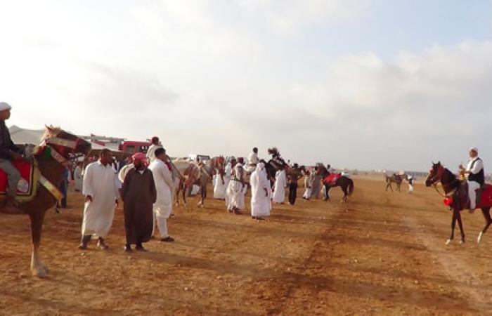 بالصور.. سباق للفروسية بمطروح خلال احتفالات العيد القومى