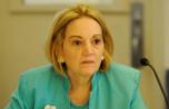 «باترسون» تغادر القاهرة نهائيًّا بعد قضائها أقصر مدة لها كسفيرة لواشنطن بالخارج
