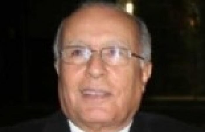 محمد فاضل: لابد من إعادة هيكلة الإنتاج الحكومي