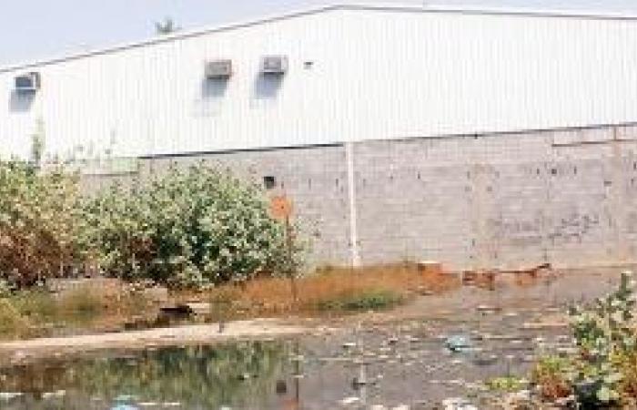 تسرب مياه الصرف الصحي يهـدد أهالي المعيصم