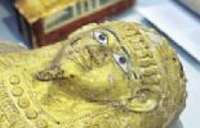 استعادة 221 قطعة أثرية لمتحف ملوي في المنيا
