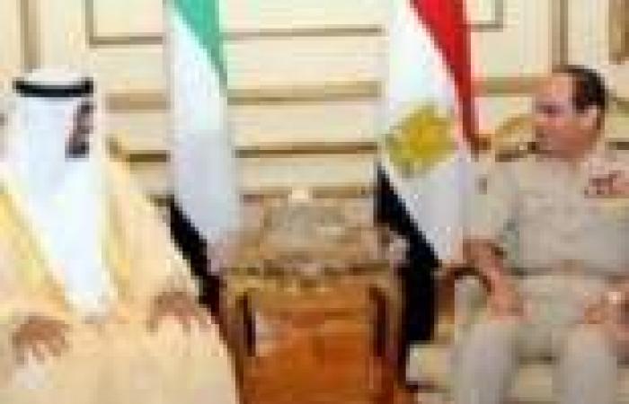 """""""السيسي"""" يلتقي نائب المجلس الأعلى للقوات المسلحة الإماراتية"""