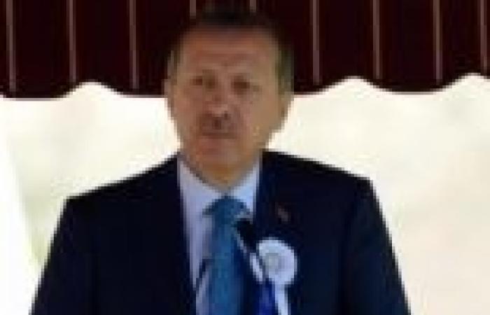 تركيا: «أردوغان» يجتمع مع «أوباما» لمناقشة الأوضاع فى سوريا فى قمة العشرين