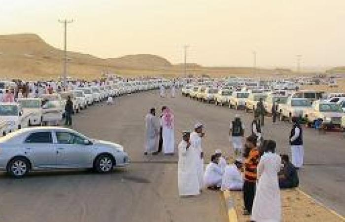 100 سيارة في يوم «نصب السيارات»