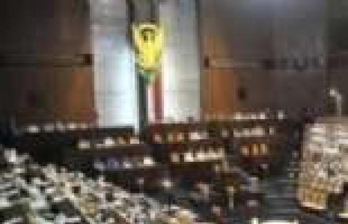 البرلمان السوداني: حرية التعبير السلمي مكفولة للجميع
