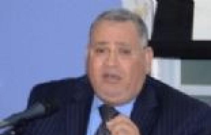 """ممثل الأزهر في """"الخمسين"""": لابد من كتابة دستور جديد"""
