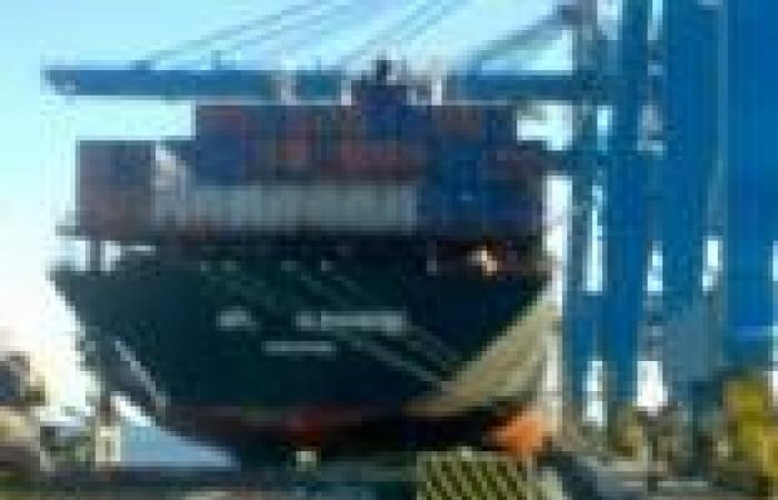 """""""التمثيل التجاري"""" يدرس اتفاق توأمة بين مينائي """"كونستاتزا"""" الروماني والإسكندرية"""