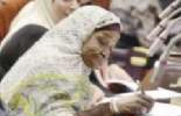 الدستور الجديد.. المادة «219» تعود للحياة بصياغة جديدة