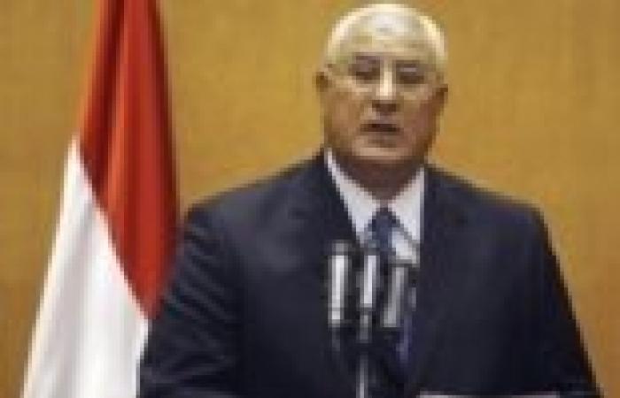 """""""منصور"""" يستقبل وزير الخارجية نبيل فهمي"""