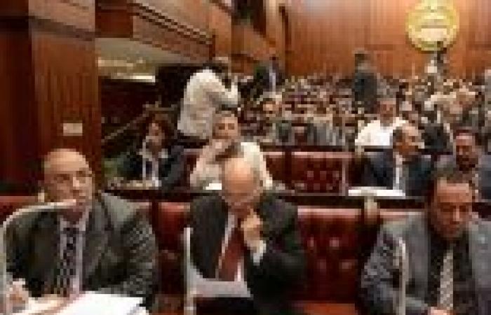 """خلاف في """"الخمسين"""" حول صياغة المادة الثالثة بمشروع الدستور"""