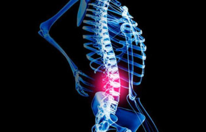 """""""البر وسيلا""""يسبب الحمى الملطية والتهابات مزمنة بالعظام والعمودالفقرى"""