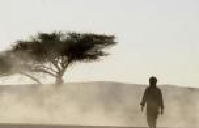 «الصحراء الغربية» تحيي الأزمة بين الجزائر والمغرب