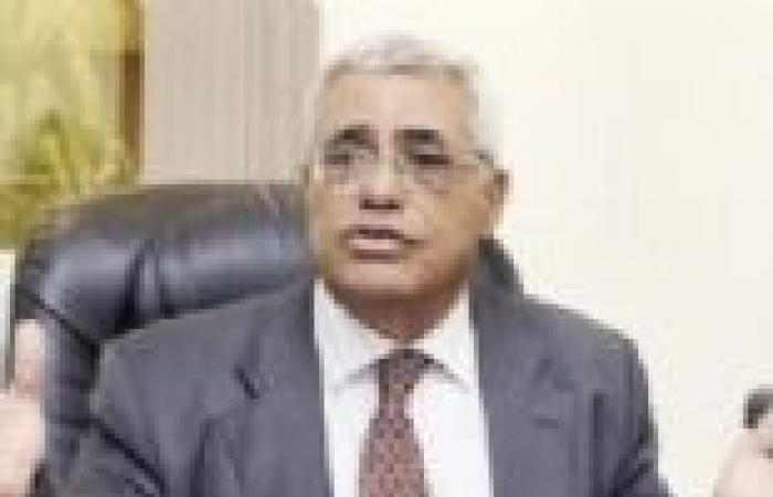 """""""نافعة"""" بعد إعلان الببلاوي تأييده لترشح """"السيسي"""": الحكومة تخدم الإخوان بفرصة الاستعداد"""