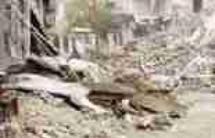 المرصد السوري: غارت جوية على ريف دمشق وحلب في شمال سوريا