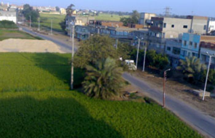 الفاو: التصحر يهدد الحزام الأخضر والرقعة الزراعية فى مصر