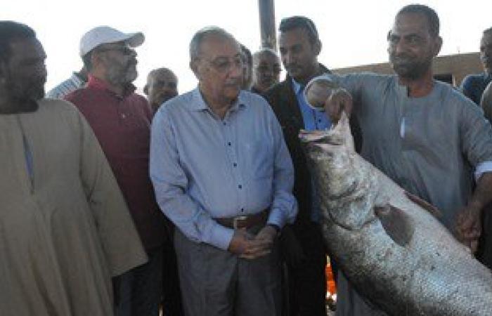 """بالصور.. محافظ أسوان يتفقد التشغيل التجريبى لمصنع """"مصر أسوان"""" للسمك"""