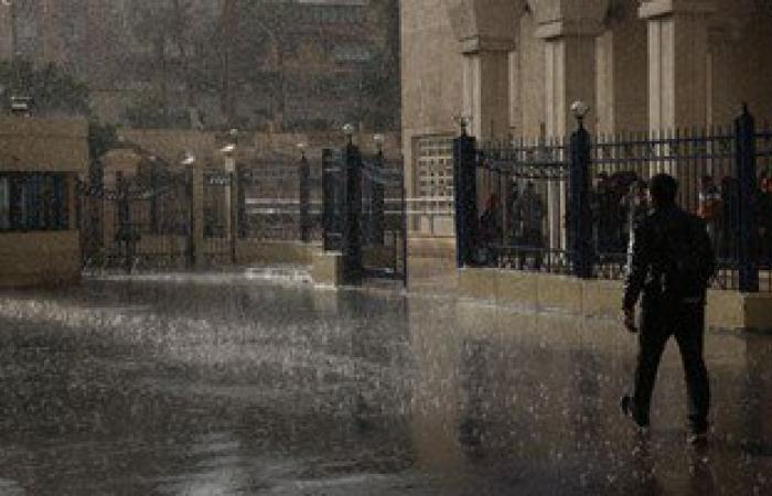 تجدد هطول الأمطار بالإسكندرية مع هبوب رياح شديدة