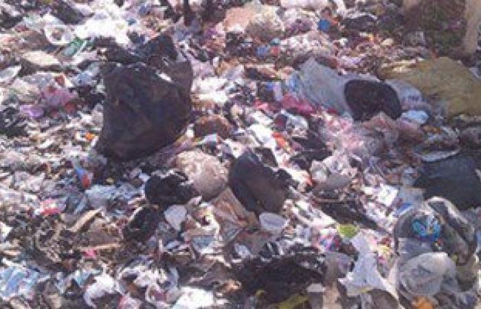 أهالى شطا لمحافظ دمياط: القمامة المتراكمة أمام مستشفى الطلبة والمدارس تهدد حياة أبنائنا