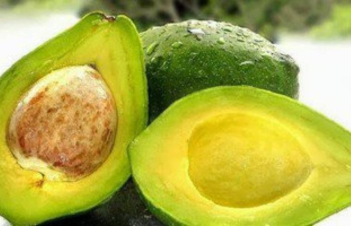الأفوكادو.. أفضل فاكهة لزيادة الوزن وعلاج النحافة