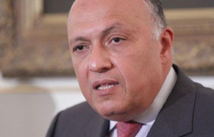سامح شكرى: على تركيا سحب قواتها سريعا من العراق دون شرط أو مماطلة
