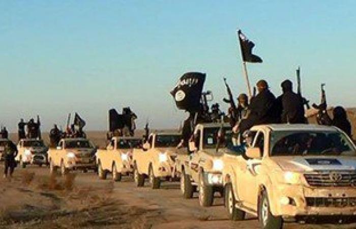 مقتل 54 داعشيا من بينهم قيادى بارز شمال الرمادي بالعراق