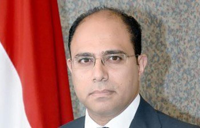الخارجية: 47 دولة أيدت انضمام مصر لمجلس السلم والأمن الأفريقى