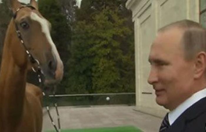بالفيديو... ملك البحرين يهدى بوتين سيف النصر والرئيس الروسى يرد بحصان أصيل
