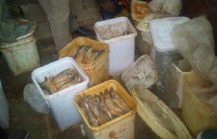 ضبط 22 طن أسماك مملحة فاسدة فى حملة تموينية بميناء الأتكة