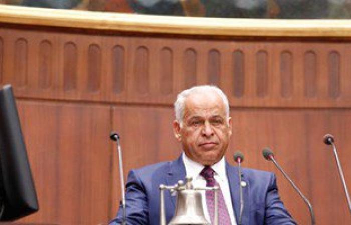 رئيس لجنة الشباب والرياضة بالبرلمان ينعى ريم مجدى بطلة مصر فى المصارعة