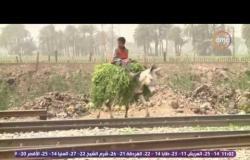 مساء dmc - معاناة أهالي كوم العرب بسوهاج بسبب مقلب القمامة