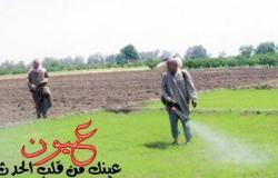 الزراعة: تحذر من كارثة «خلطة العفاريت» تتسبب في أخطر الأمراض