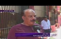 كاميرا dmc تتابع احتفالات المواطنين بعيد الفطر المبارك من حديقة الحيوان بـ الجيزة - الأخبار