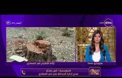 مساء dmc - هاتفيًا المهندسة أمل صادق ترد على شكاوي مواطنين منطقة المعادي بسبب إزالة الأشجار