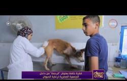 مساء dmc - رئيسة الجمعية المصرية للرحمة بالحيوان ترد على فكرة التشبه بالغرب لإنشاء الجمعية