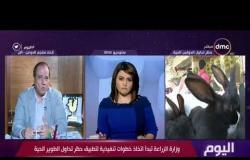 اليوم - نائب رئيس اتحاد منتجي الدواجن : حظر تداول الدواجن الحية سيخفض الأسعار