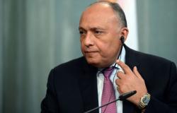 شكري والصفدي يبحثان تطورات الأزمة السورية والمصالحة الفلسطينية