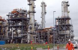 الطاقة الدولية: دولة عربية تصبح رابع أكبر منتج للنفط في العالم بعد أمريكا والسعودية وروسيا